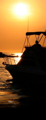 Cabo fishing charter rates low price top quality for Cabo san lucas fishing charters prices